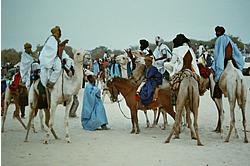 Kamelen er stadig tuaregernes foretrukne transportmiddel - også når de er til fest i ørkenen