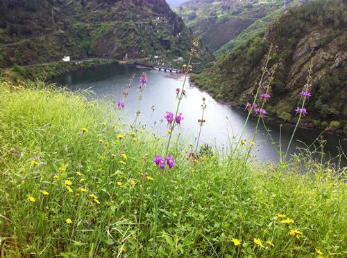 Dæmningen ved Embalse de Salime blev bygget i 1954 og søen oversvømmede hele dalen med landsbyer
