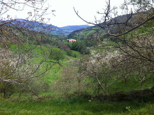 Klostret i Valdedios ligger nede i dalen