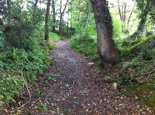 Stien gennem skoven efter Salas er heldigvis ikke stejl, når man lige har spist